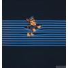 VORBESTELLUNG PAW PATROL MARSCHALL RUBBLE CHASE SKYE PANELE AUF STREIFEN ( SET 3ST)