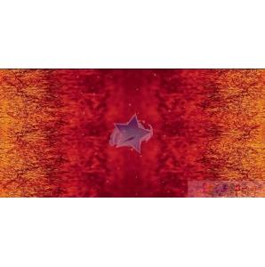 VORBETELLUNG JERSEY sunfire grass 0.5M